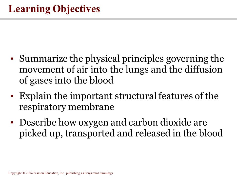 Learning Objectives Summarize the physical principles governing the movement of air into the lungs and the diffusion of gases into the blood.