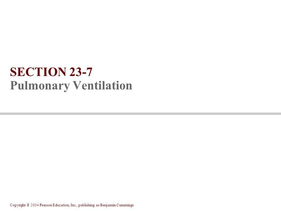 SECTION 23-7 Pulmonary Ventilation