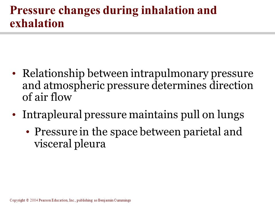Pressure changes during inhalation and exhalation