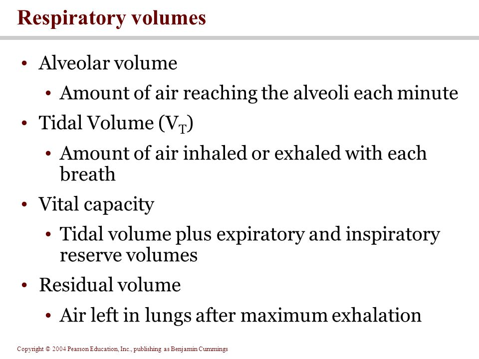 Respiratory volumes Alveolar volume
