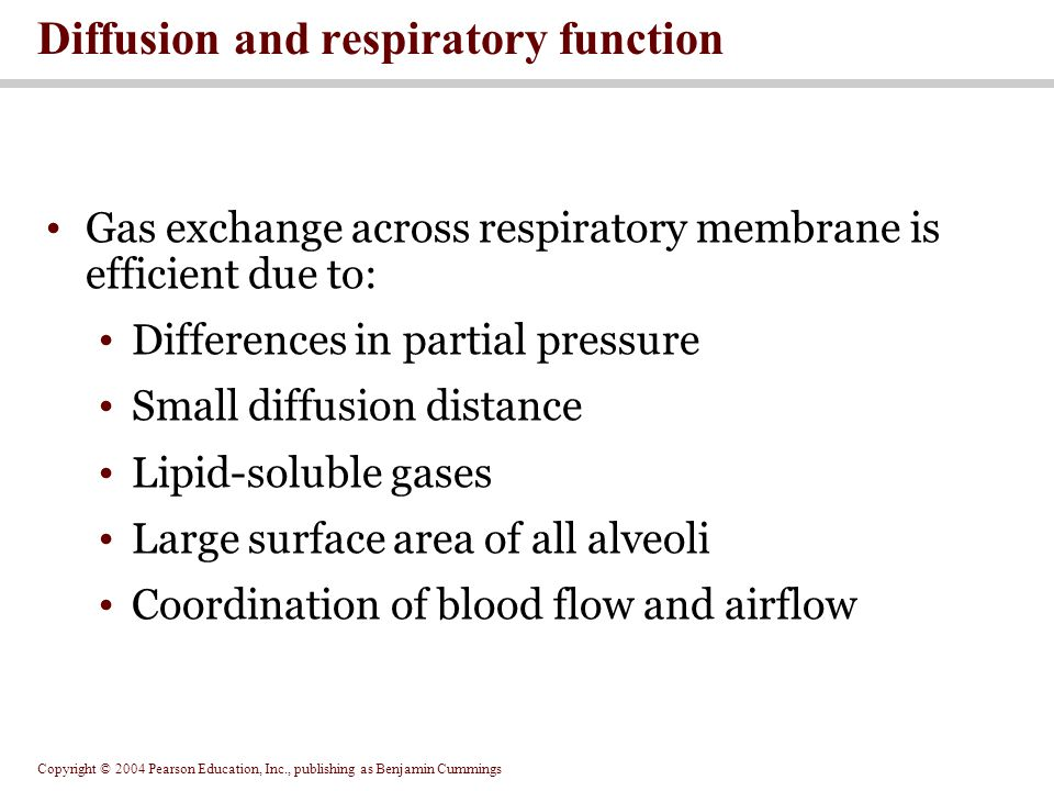 Diffusion and respiratory function