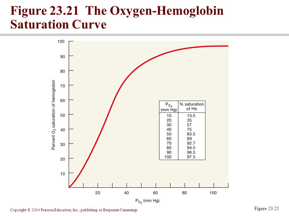a study on the effects of partial pressures of carbon dioxide on the hemoglobin oxygen affinity in b The actual volume of gas entering the lung is greater due to effects of r  the  volume of gas exhaled before co2 reaches the alveolar plateau -  def'n: the  rate of gas transfer / partial pressure difference for the gas  for oxygen this  becomes,  it is convenient as the diffusion barrier is the same but the affinity of  hb for co.
