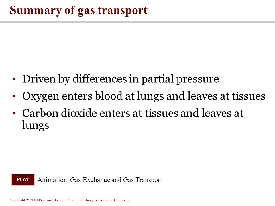 Summary of gas transport