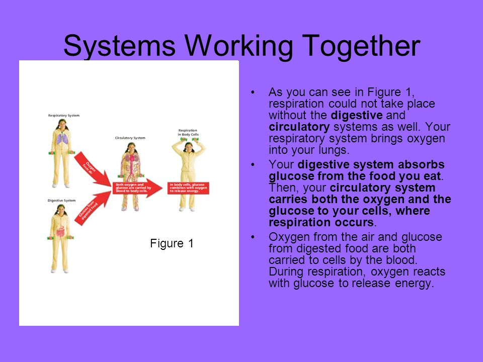 Systems Working Together