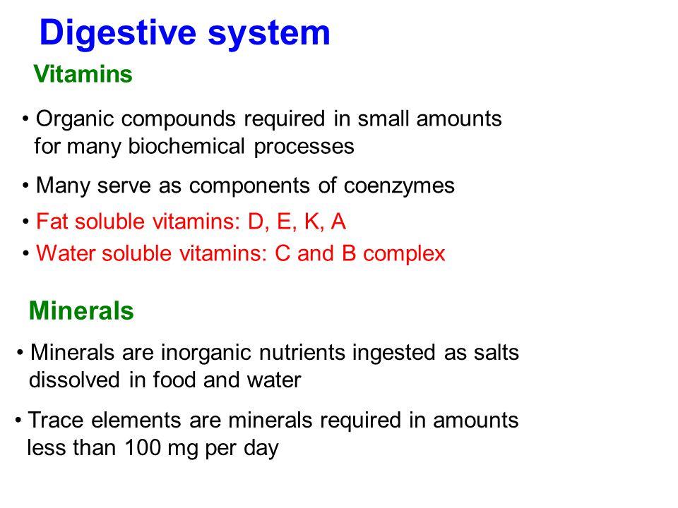 Digestive system Minerals Vitamins