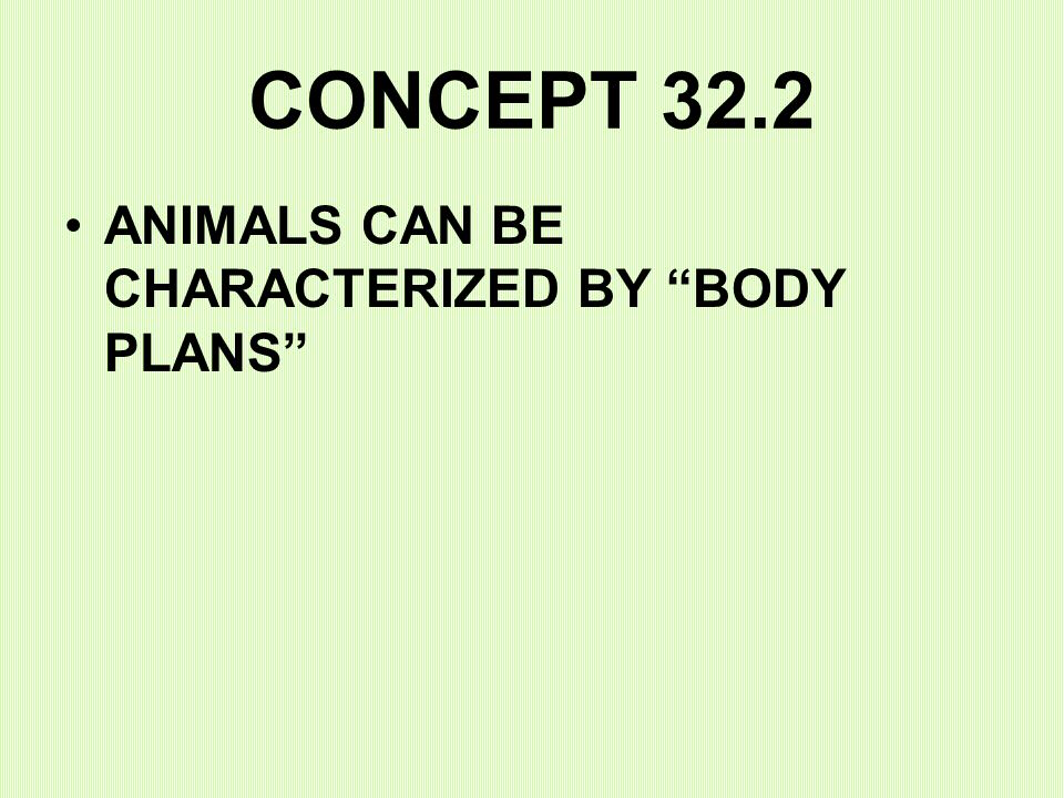 CONCEPT 32.2 ANIMALS CAN BE CHARACTERIZED BY BODY PLANS