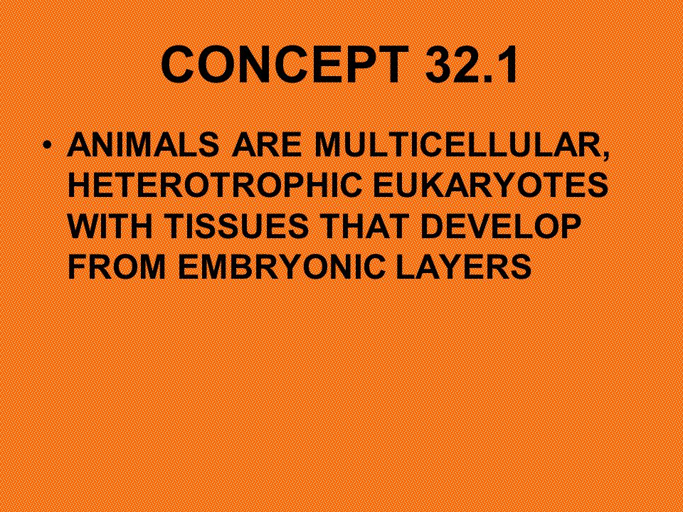 CONCEPT 32.1 ANIMALS ARE MULTICELLULAR, HETEROTROPHIC EUKARYOTES WITH TISSUES THAT DEVELOP FROM EMBRYONIC LAYERS.