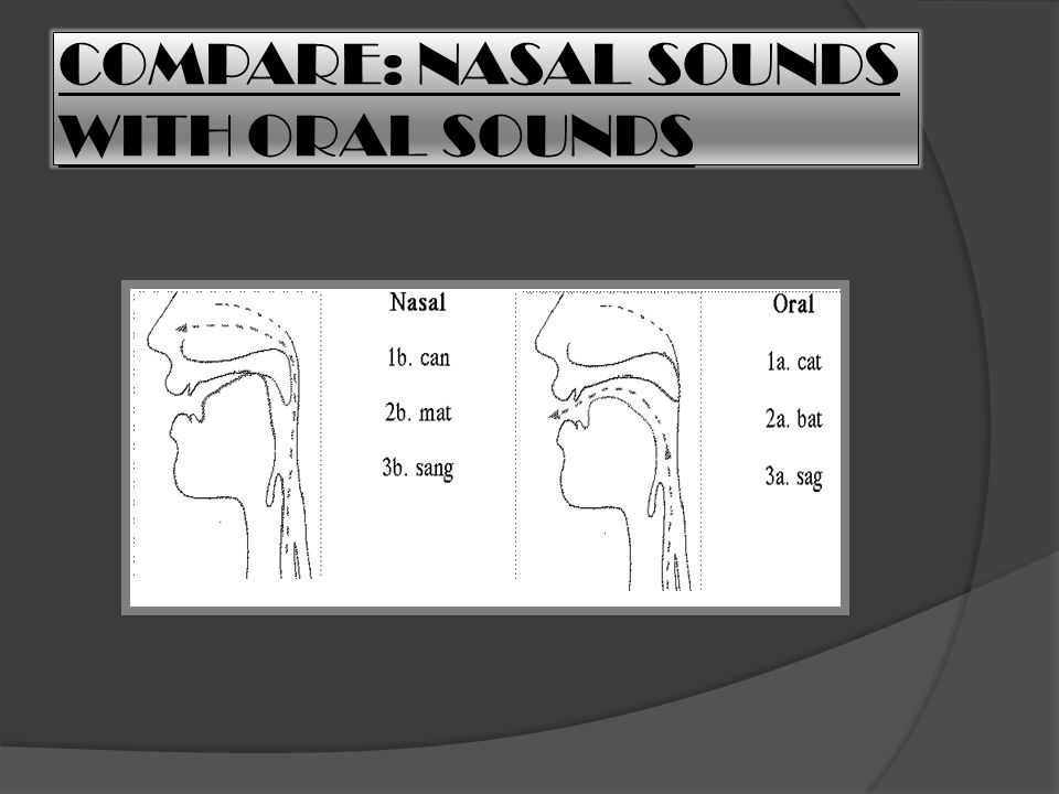 COMPARE: NASAL SOUNDS WITH ORAL SOUNDS