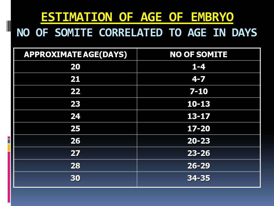ESTIMATION OF AGE OF EMBRYO NO OF SOMITE CORRELATED TO AGE IN DAYS