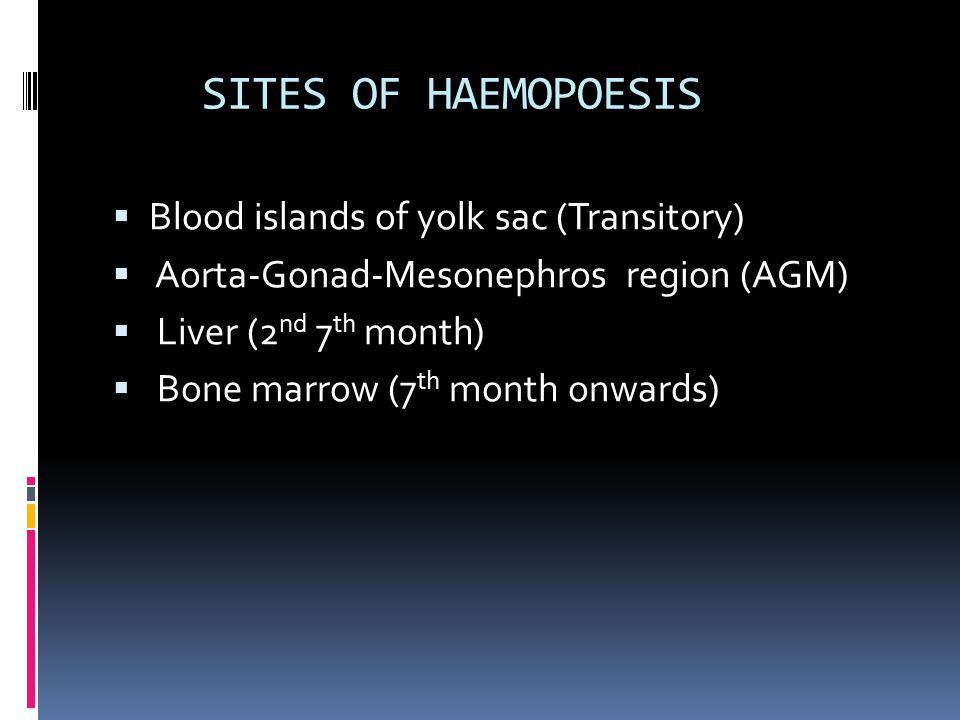 SITES OF HAEMOPOESIS Blood islands of yolk sac (Transitory)