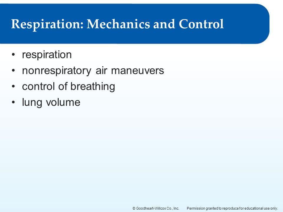 Respiration: Mechanics and Control