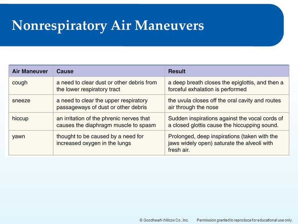 Nonrespiratory Air Maneuvers