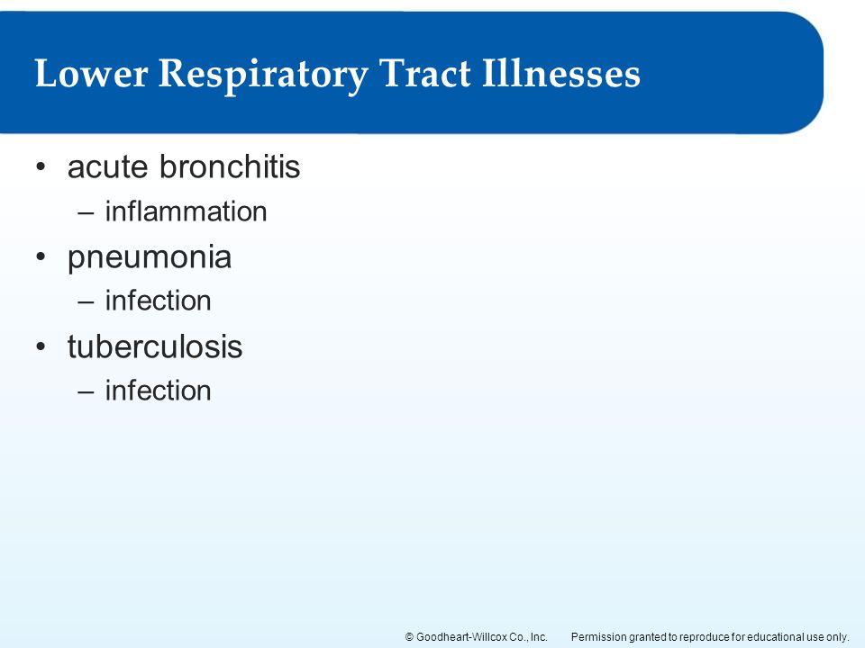 Lower Respiratory Tract Illnesses