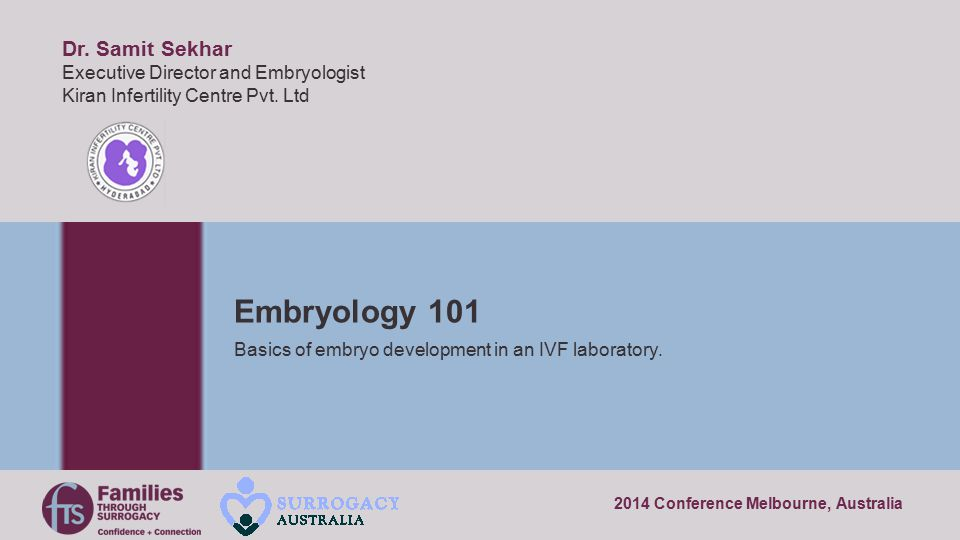 Basics of embryo development in an IVF laboratory.