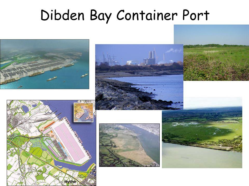 Dibden Bay Container Port