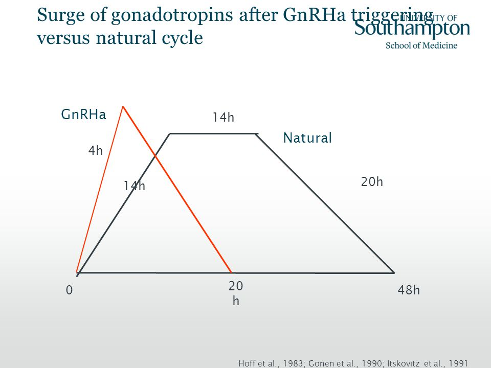 Surge of gonadotropins after GnRHa triggering versus natural cycle