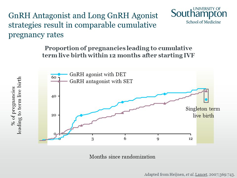 GnRH Antagonist and Long GnRH Agonist strategies result in comparable cumulative pregnancy rates