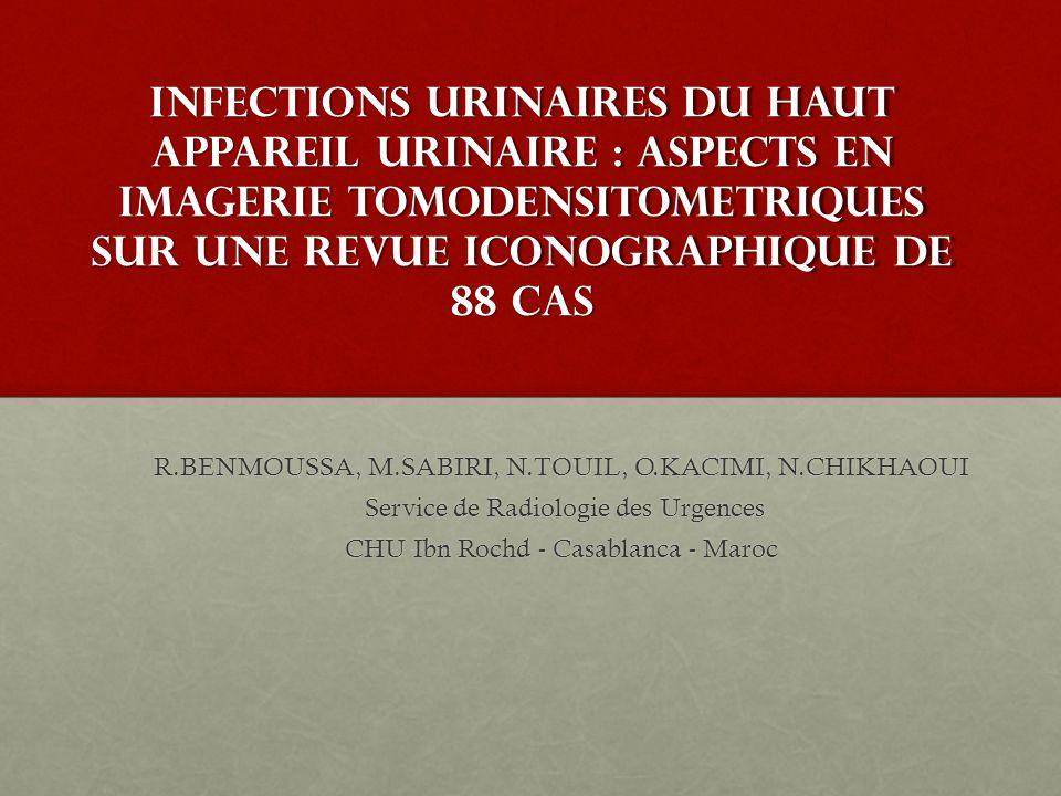 INFECTIONS URINAIRES DU HAUT APPAREIL URINAIRE : ASPECTS EN IMAGERIE TOMODENSITOMETRIQUES SUR UNE REVUE ICONOGRAPHIQUE DE 88 CAS