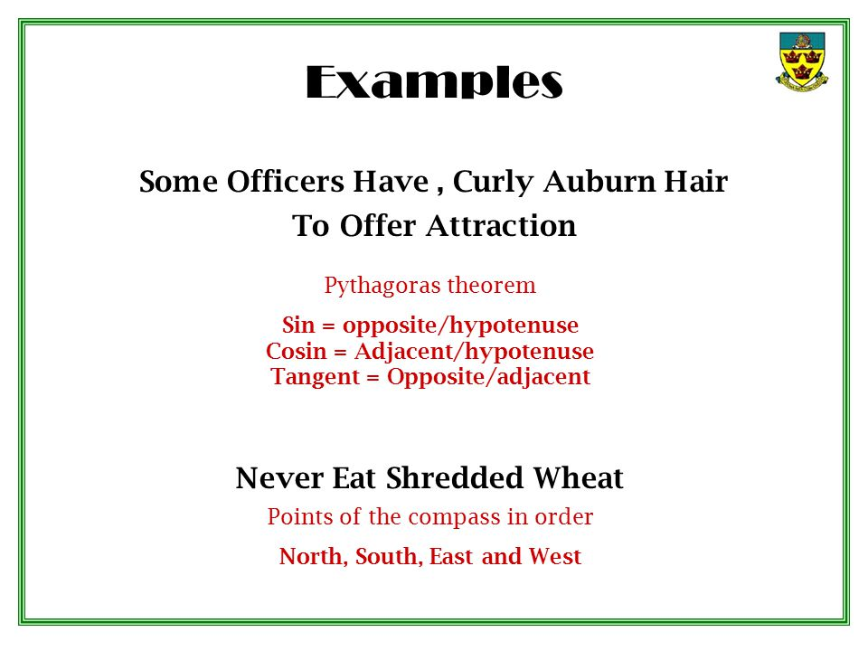 Some Officers Have , Curly Auburn Hair To Offer Attraction