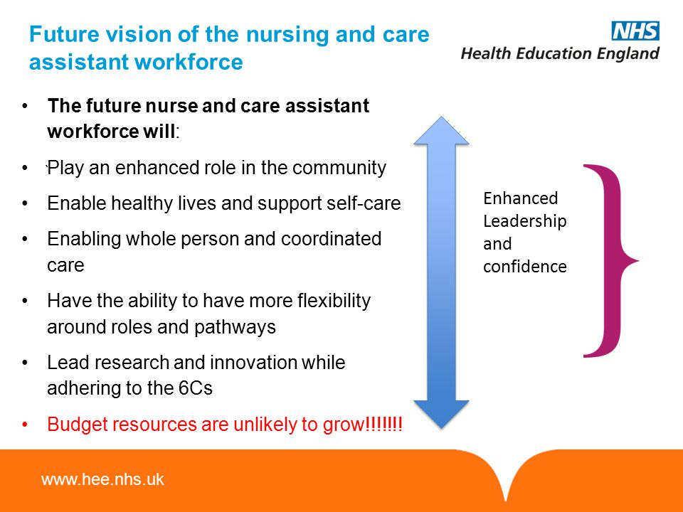 Future vision of the nursing and care assistant workforce