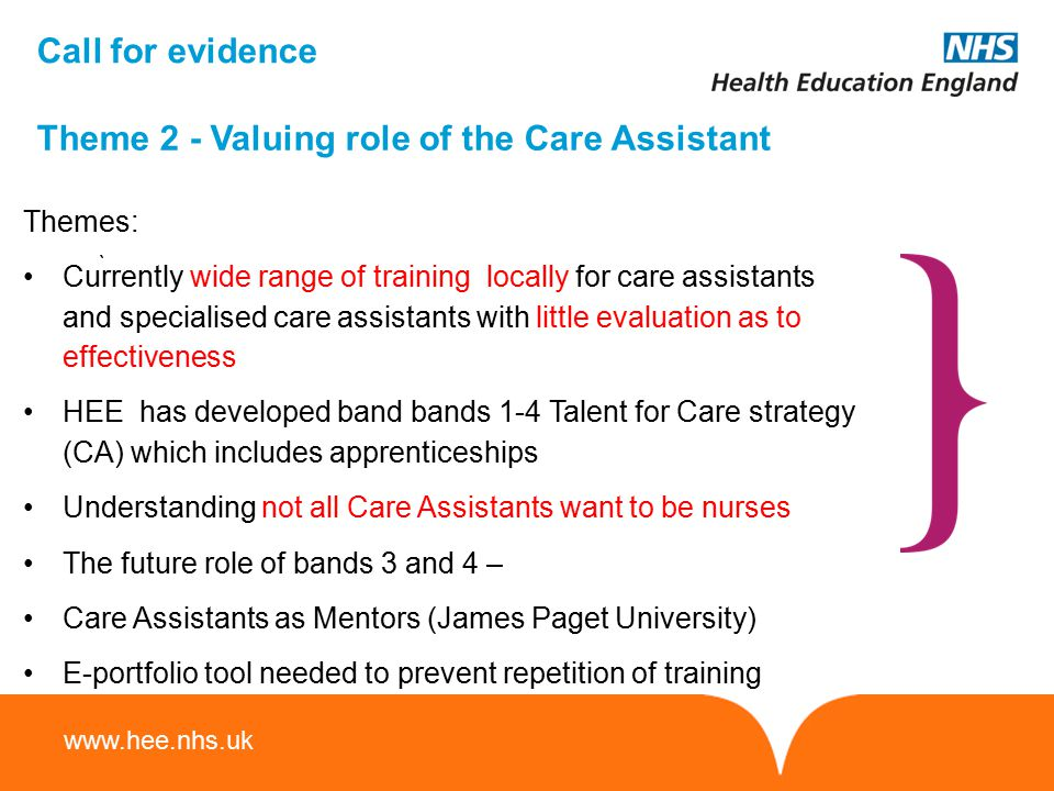 Theme 2 - Valuing role of the Care Assistant
