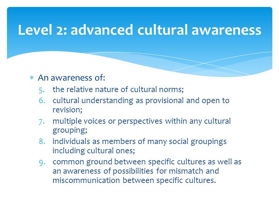 Level 2: advanced cultural awareness