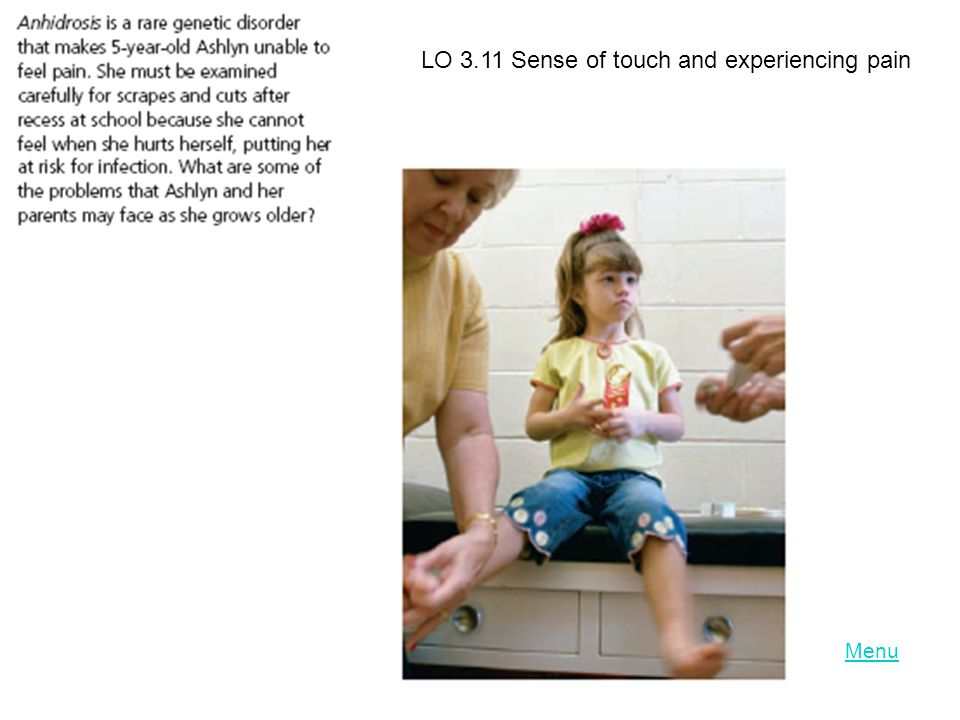 LO 3.11 Sense of touch and experiencing pain