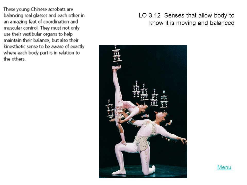 LO 3.12 Senses that allow body to know it is moving and balanced