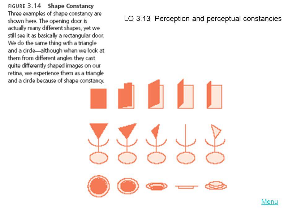 LO 3.13 Perception and perceptual constancies