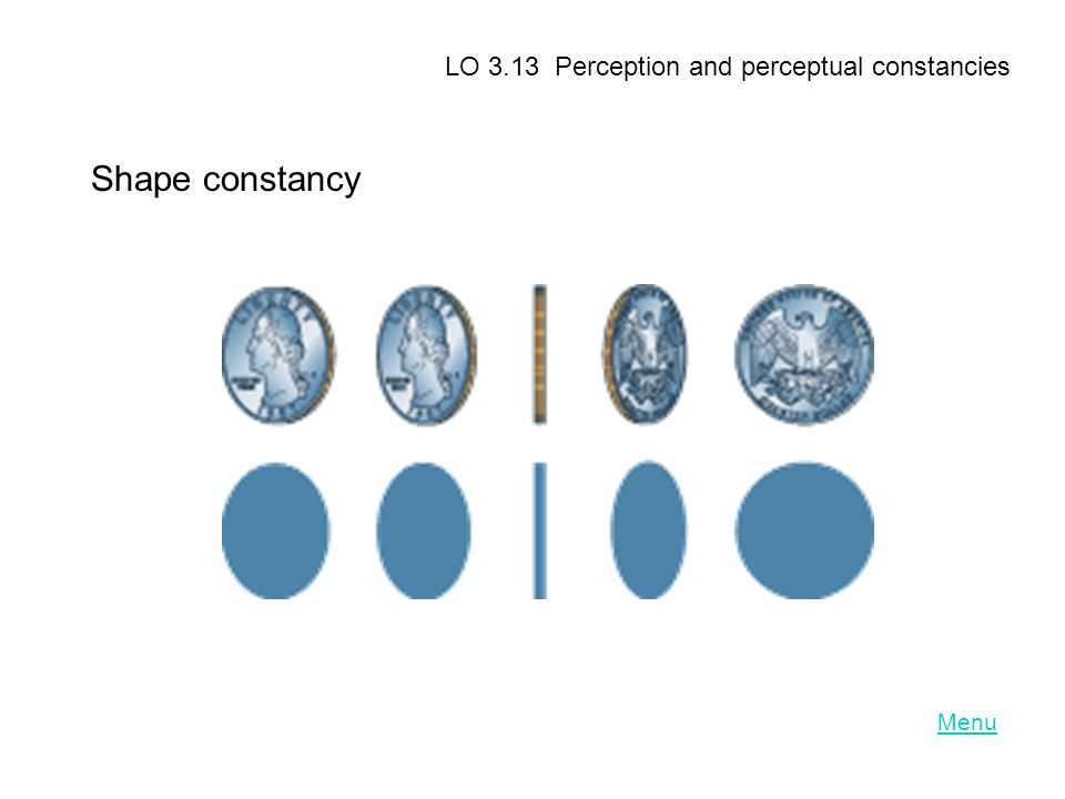 LO 3.13 Perception and perceptual constancies