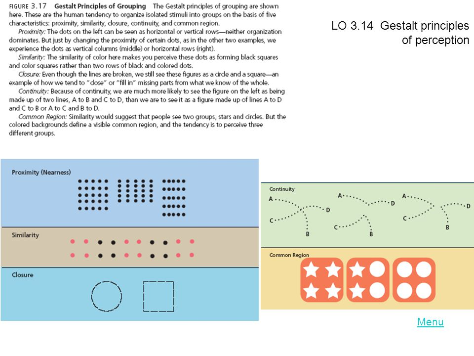 LO 3.14 Gestalt principles of perception Menu
