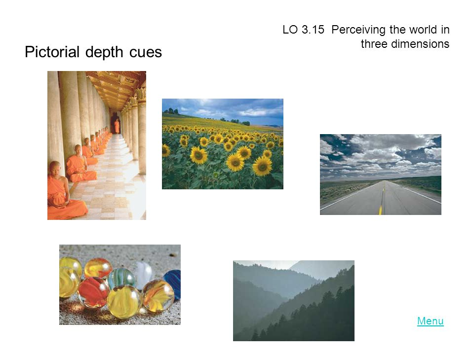 Pictorial depth cues LO 3.15 Perceiving the world in three dimensions