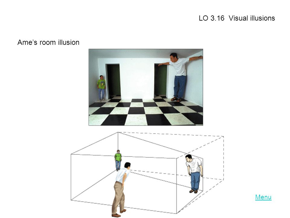 LO 3.16 Visual illusions Ame's room illusion Menu