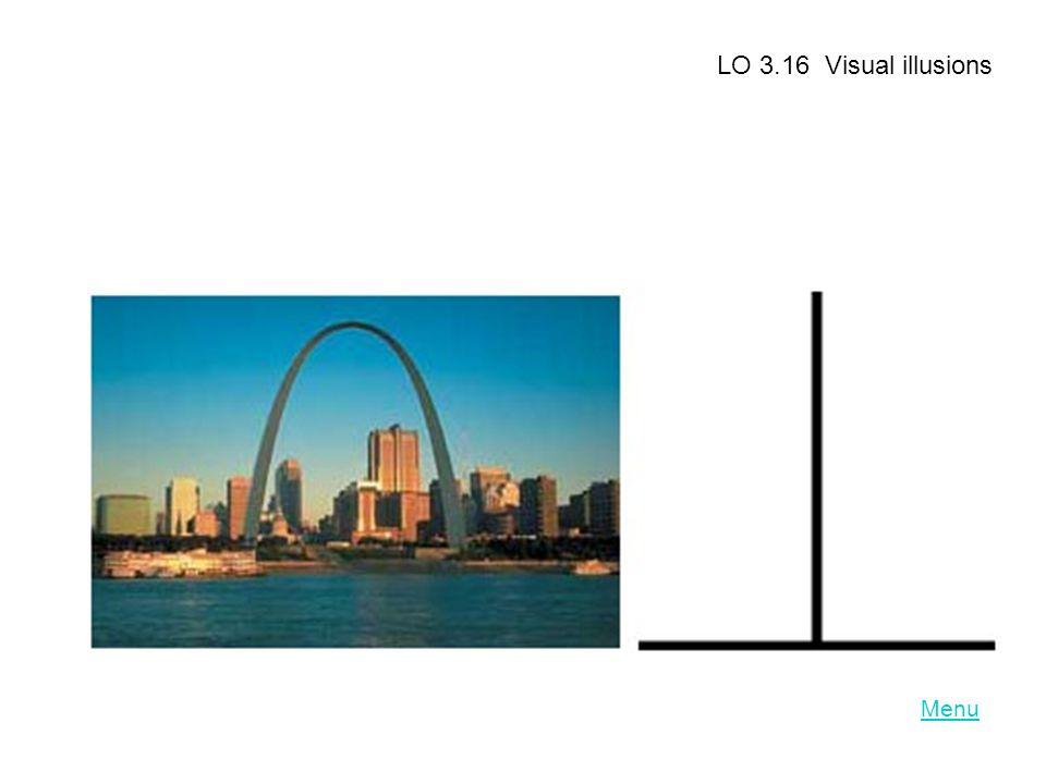 LO 3.16 Visual illusions Menu