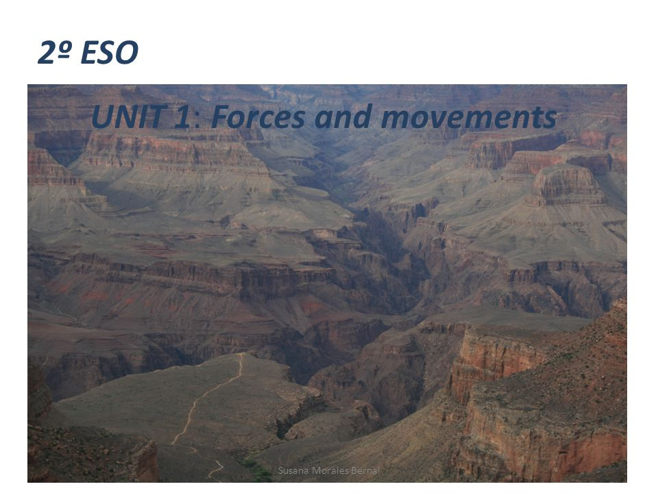 UNIT 1: Forces and movements