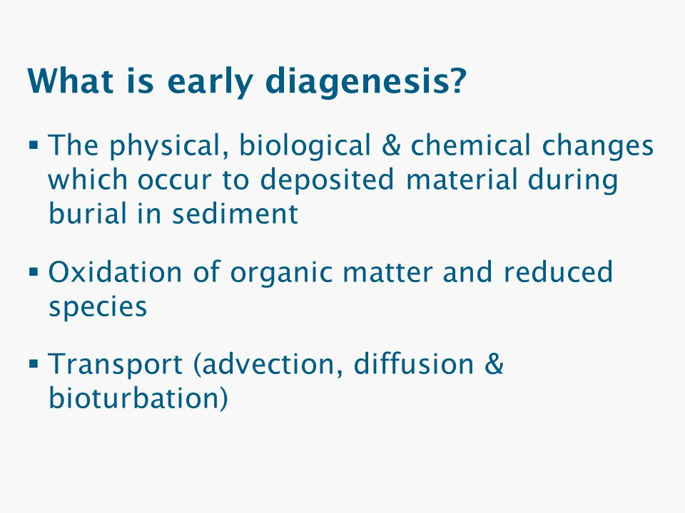 What is early diagenesis