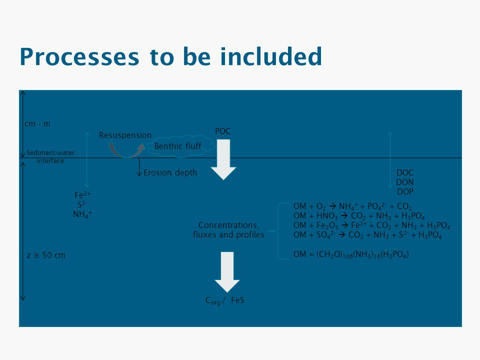 Processes to be included