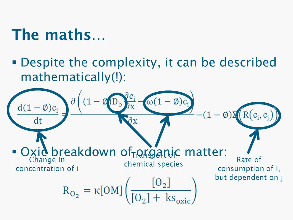 The maths… Despite the complexity, it can be described mathematically(!): Oxic breakdown of organic matter:
