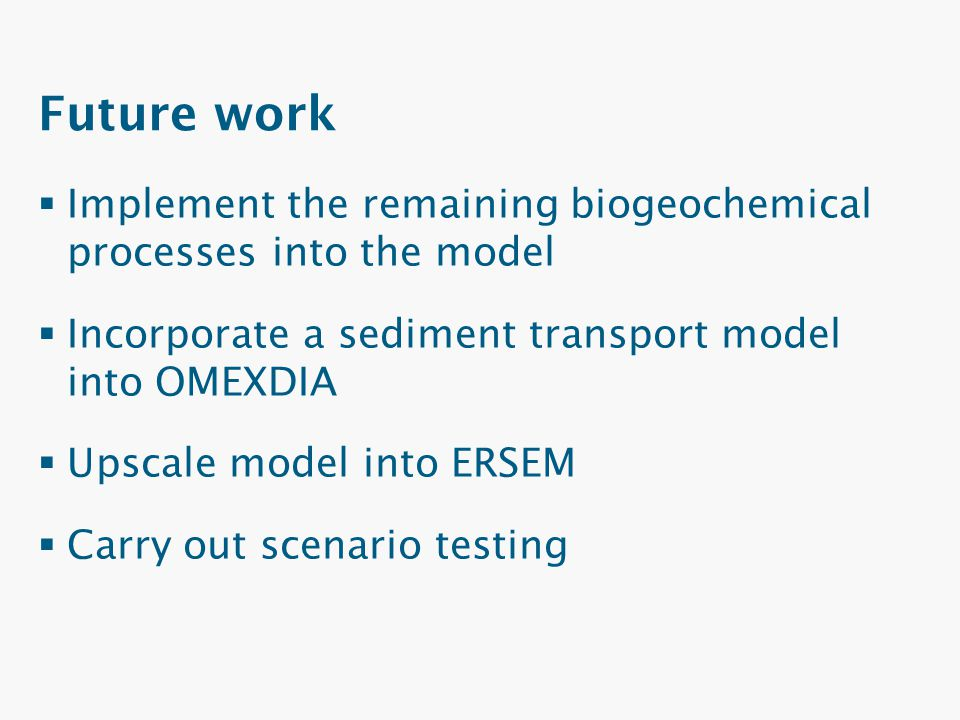 Future work Implement the remaining biogeochemical processes into the model. Incorporate a sediment transport model into OMEXDIA.