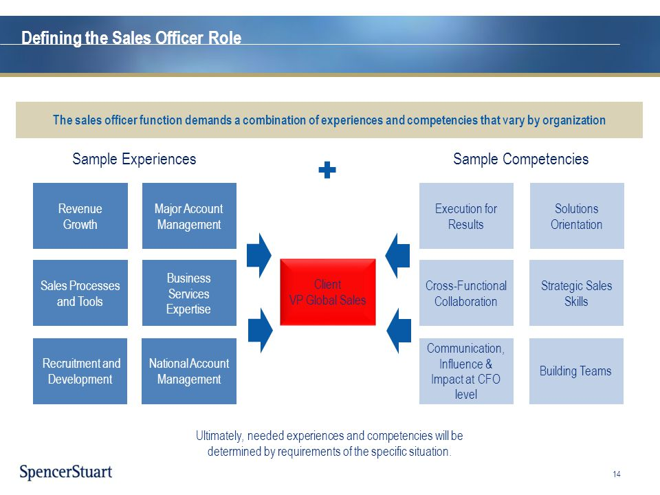 Defining the Sales Officer Role