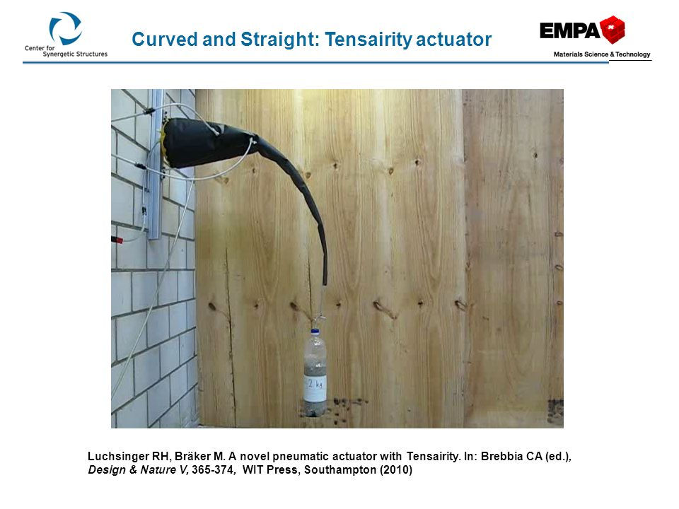 Curved and Straight: Tensairity actuator