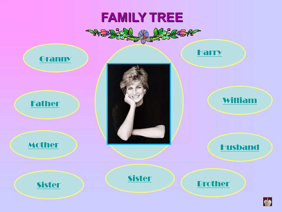 FAMILY TREE Harry Granny William Father Mother Husband Sister Sister