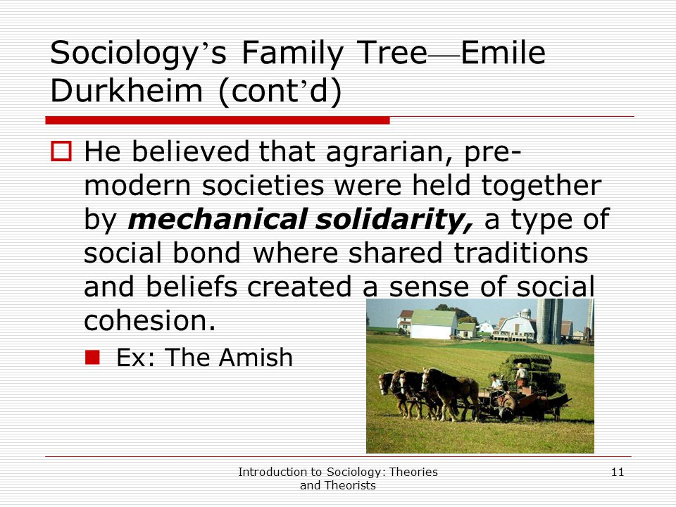 sociological theories about the modern family Sociology revision notes - family these notes start off with the two main structural or systems theories and then it is also strikingly modern and even.
