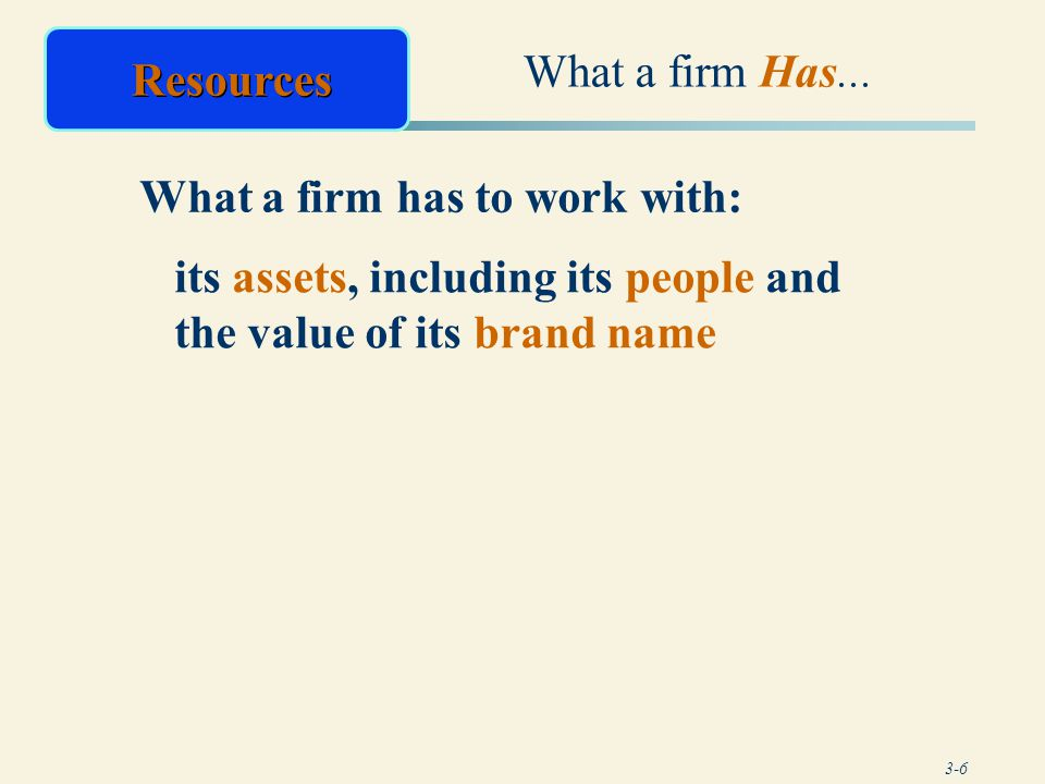 What a firm Has... Resources.