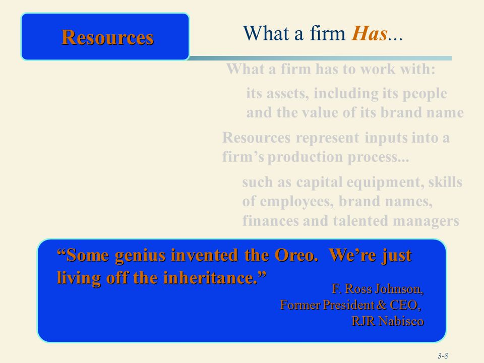 What a firm Has... Resources
