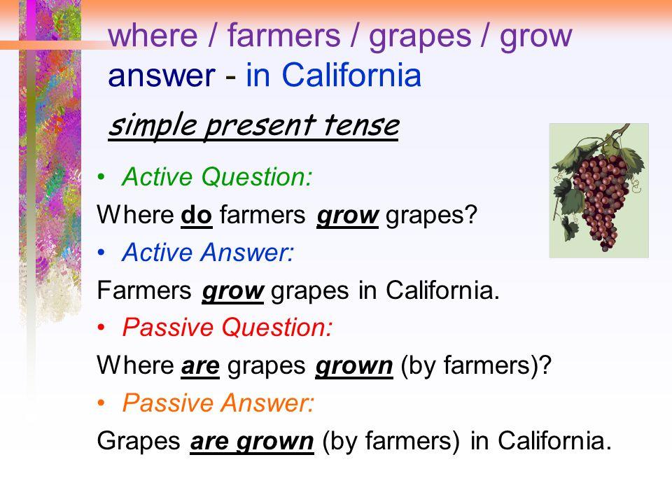 where / farmers / grapes / grow answer - in California simple present tense