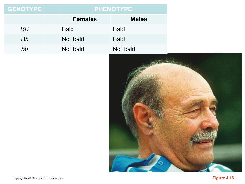 GENOTYPE PHENOTYPE Females Males