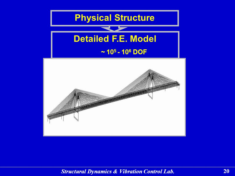 Physical Structure Detailed F.E. Model
