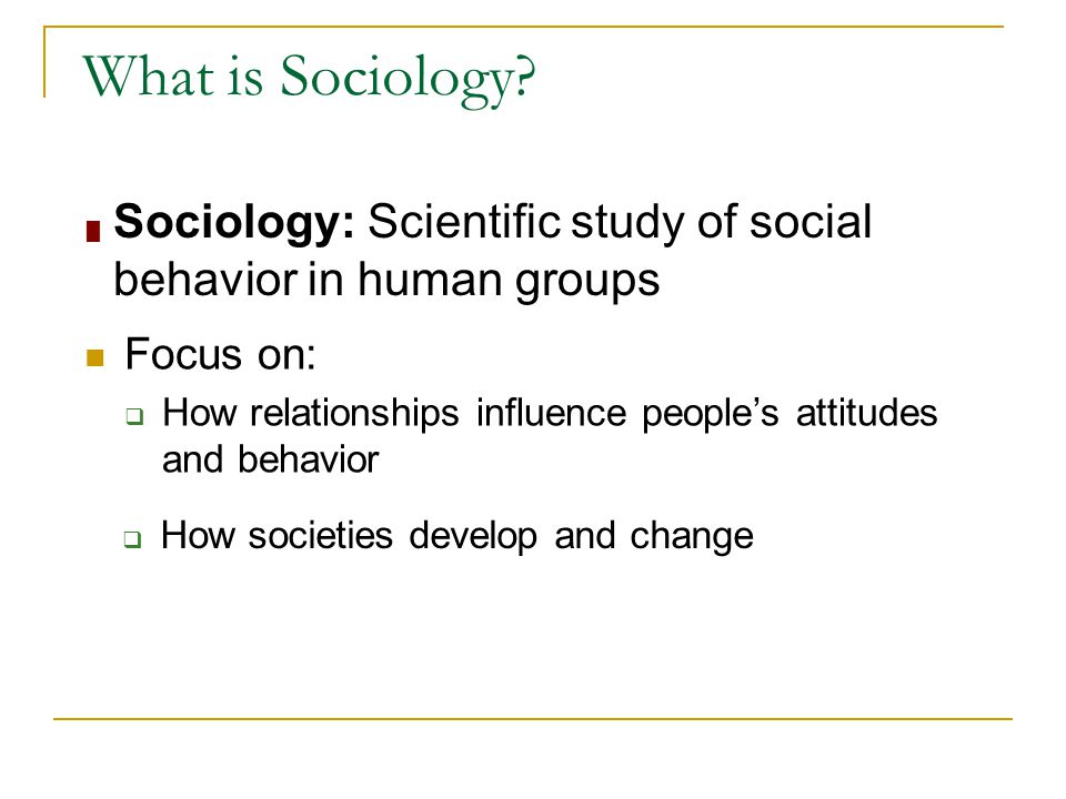 What is Sociology Sociology: Scientific study of social behavior in human groups. Focus on:
