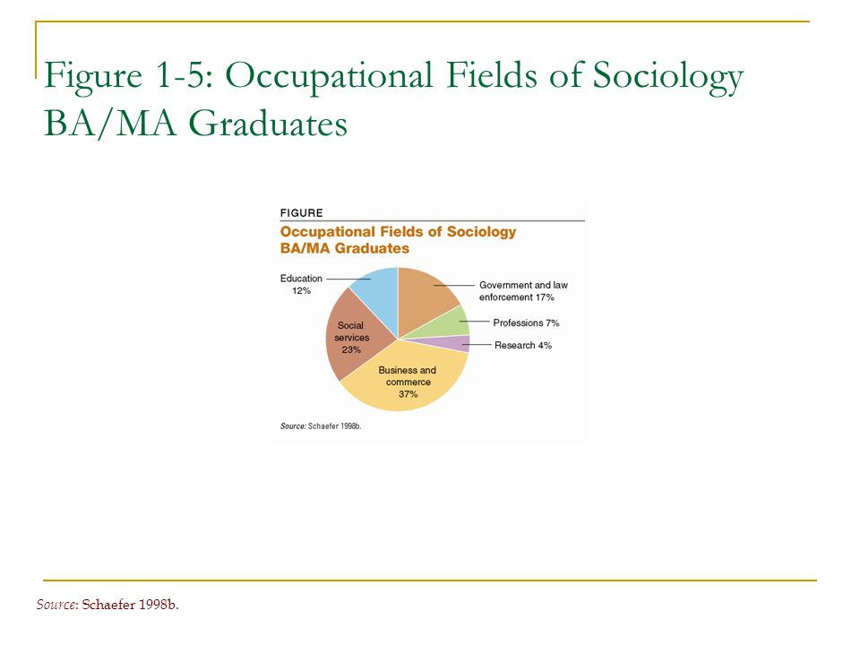 Figure 1-5: Occupational Fields of Sociology BA/MA Graduates